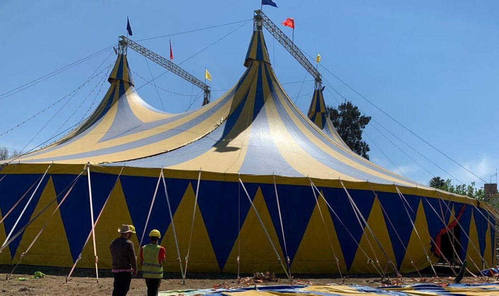 """Con """"Safari"""", vuelve el circo a Salta prometiendo un show divertido y seguro"""